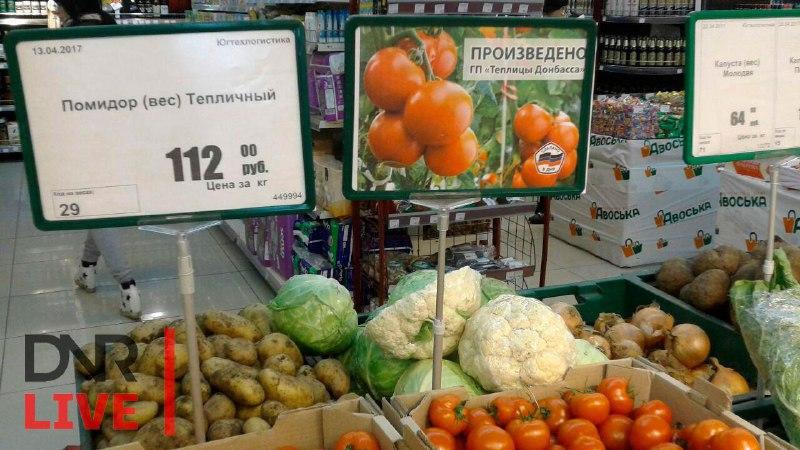 помидоры днр