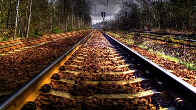 V-DNR-planiruyut-zapustit-poezd-v-Rossiyu..jpg