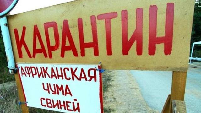 chuma-sviney-donetskaya-oblast-e1514288248314.jpg