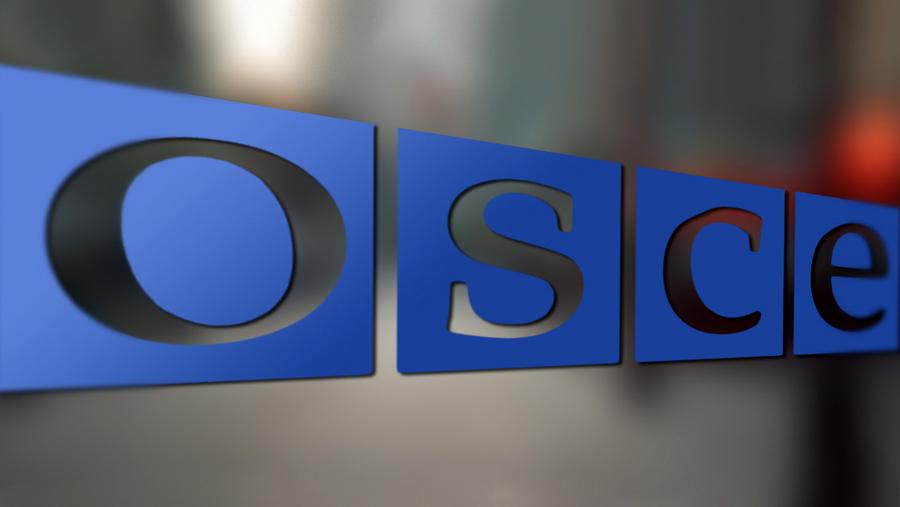 OBSE-hochet-kontrolirovat-granitsyi-DNR-i-LNR-s-Rossiey.jpg