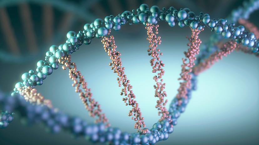 geneticheskiy-pasport-e1576319057613.jpg